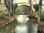 El puente Ara